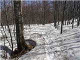 Mali in Veliki Snežnikpot po snegu