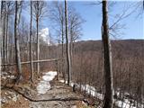 Mali in Veliki Snežnikprvi pogled proti vrhu