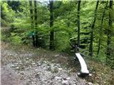 Davča - davski_slapovi