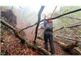 Grape, slapovi, zimski alpinistični vzponiJutranji pristop, med mikado in turško savno...