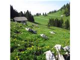 Veliki RogatecPlanina Travnik