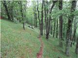 Srednji VelebitLepo markirana prečna pot proti Bačić kuku