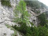 Belopeška jezera - Rifugio Zacchi Zavarovani prehod