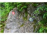 Hleviška planinaPoti so označene -za njih skrbi PD Idrija.