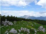 Vrtaško SlemeVrtaški vrh
