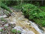 Grlovecna začetku poteka pot ob potoku