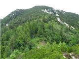 VrtačaSrednji vrh in sedlo Šija