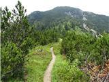 VrtačaSrednji vrh