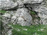Grintovec čez Dolge steneDomorodca pod Kokrskim sedlom