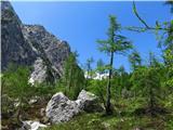Skriti kotički v gorskem rajuOvčja stran