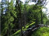 Skriti kotički v gorskem rajuGreben Ruša