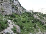 Krnička gora iz Matkove KrniceEdina dva pohodnika, ki sem ju srečal danes, sta šla na Jezersko sedlo.