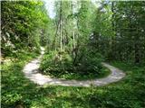 Vršič 1737mstara cesta je udobna pot za vsakogar