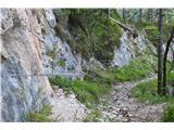 Planina Pekol -Reklanska dolinaVmes so odseki varovane poti.