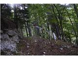 Planina Pekol -Reklanska dolina