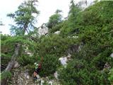 Matkova kopana manjšem zelenem sedelcu na grebenu pod Matkovo kopo, po avstrijski strani iz severa na vrh