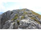 Baita Rododendro - monte_lastroni