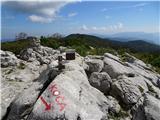 Mali Golakpogled z vrha vse do Nanosa