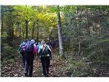 Razgledišče pod Srnjakom nad Logatcem-919mSkoraj v celoti poteka pot po gozdu, nekaj pa tudi ob cesti.