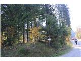 Razgledišče pod Srnjakom nad Logatcem-919mNazaj v dolino.