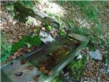 Prečenje Trentski Pelc - Srebrnjakedina voda ob dolgi gozdni cesti - na 19 ovinku