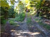 Prečenje Trentski Pelc - Srebrnjakrazcep gozdne ceste med 19 in 20 ovinkom, naša pot vodi desno