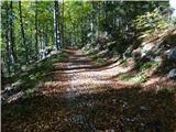 Prečenje Trentski Pelc - Srebrnjakzgornji lepši del stare vojaške ceste