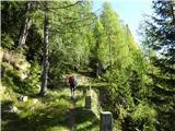 Prečenje Trentski Pelc - Srebrnjaksledi najlepši del poti proti lovski koči Berebica