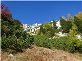 Prečenje Trentski Pelc - Srebrnjak... naprej malo v levo mimo otok ruševja