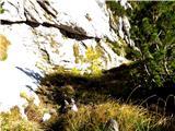 Prečenje Trentski Pelc - Srebrnjakmajhen obvoz v levo na trave pri macesnu se izkaže za težji kot je vzpon po skalni grapi