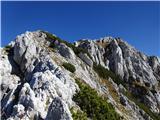 Prečenje Trentski Pelc - Srebrnjakpogled nazaj na prehojeni zgornji del zahodnega grebena iz Pelca