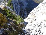 Prečenje Trentski Pelc - Srebrnjaktukaj na desno in na severno stran grebena - še ne gre !