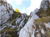 Prečenje Trentski Pelc - Srebrnjaksledi malo težji in strm del pod sedelcem pod prvim predvrhom Srebrnjaka