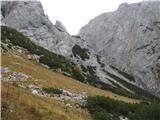 Turska gora čez Kotliški graben in ŽmavčarjiKo se ti odpre tale pogled, si že skozi nadležno ruševje.