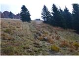 Kojca (1303m)Dol po na novo nadelani poti v vas Bukovo.