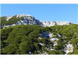 Dleskovec 1965 mVeliki vrh