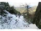 CiprnikOd odcepa za Planico do vrha Ciprnika se kar zvezno hodi po snegu.