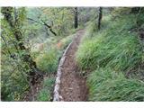 Stene Sočerge -Kraški rob,spodmoli,naravni most, Lačna, Hrastovlje  Lepa potka.