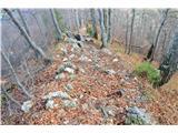 Po poti Cvetja v jeseniNekaj nas gre po grebenski na vrh Blegoša.