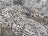 Ferata Bruno Biondi in prečenje najlepšega grebena v dolini reke GlinščiceNa vrhu grebena
