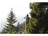 Kriška goraV objemu gozda.