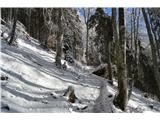 Kriška goraKmalu se začne sneg.