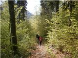 Belopeška jezera - Rifugio Zacchi v objemu zelenja...