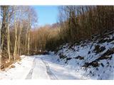 Mont Mia  ( Mija ) 1237mzasnežena cesta....vozili so drva