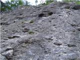 Planina Rčitnoopremljena plezalna stena (del) v Zaborštu - Poljšica pri Bledu