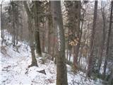 Drameljska planinska pot