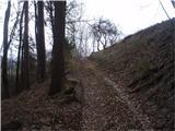 Po poteh Vinske gore...preko brvi sva zastavila korak v smeri za Lipnik...
