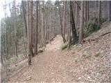 Po poteh Vinske gore
