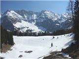 Čisti vrhogromna bela preproga pred planino