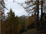 Strelovec - Krofička - Klemenče jama - Strelovecv ozadju vrh Strelovca